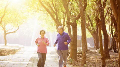 Người cao tuổi đi du lịch cần chú ý gì